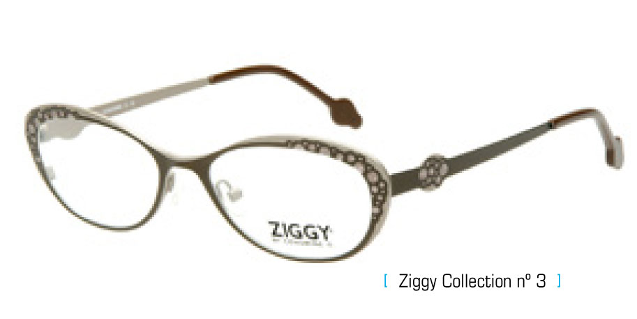Ziggy Eyeglass Frames : Frames Envision Page 5